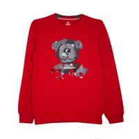 Кофта (120-160)-графический серый мишка красный 75702-02