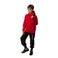 Костюм спортивный (8-15)-с капюшоном, на горловине боковой замок, с вертикальной надписью, брюки на высоком манжете бордо/черный 20254
