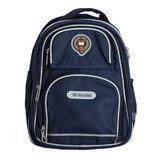 Рюкзак (ортопедический)- с жёстким  большим карманом  , 3 замка , посередине эмблема, с серебристым кантом синий 588
